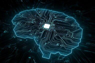 AI Brain Circuit Connectivity
