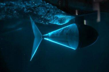 Robotic Fish Tail