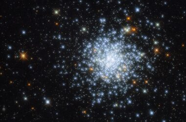 Hubble repère un cluster éblouissant dans le cloud
