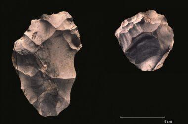 Évolution humaine : un record d'incendie montre que la diffusion culturelle a décollé il y a 400 000 ans
