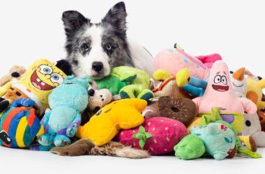 Max Dog Toys