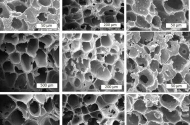 Transformer le plastique en mousse pour lutter contre la pollution : une nouvelle méthode pour réutiliser du plastique auparavant non recyclable