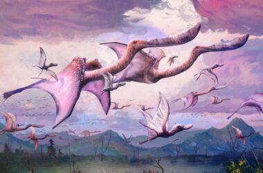 Agile Fliers: les ptérosaures nouvellement éclos ont peut-être été capables de voler