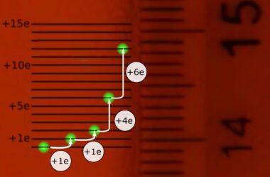 Individual Electron Absorption