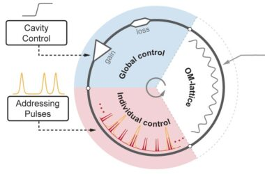 Des «réacteurs parallèles» à base de fibres de cristal photonique dévoilent des analogies collectives entre la matière et la lumière des molécules de soliton