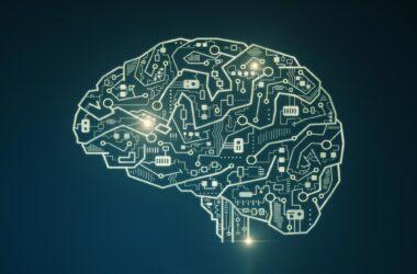 Brain Computing Circuit
