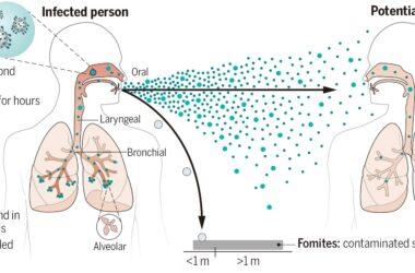 Airborne Transmission of Virus-Laden Aerosols