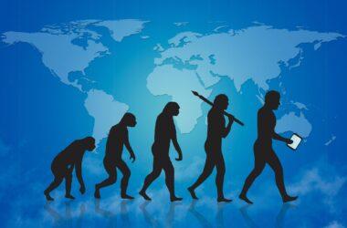 Human Evolution Concept