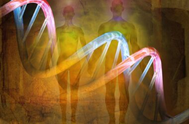 Human DNA Evolution History Concept