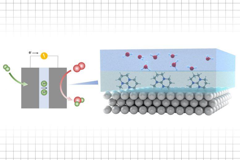 Améliorer les taux de réaction dans un processus électrocatalytique
