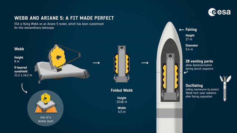 Webb et Ariane 5 Perfect Fit